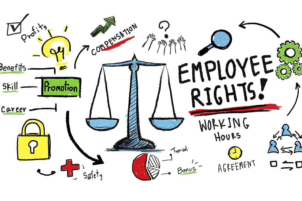 What does Employment Law Include?